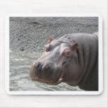 ¡Hipopótamo descarado! Alfombrillas De Raton