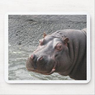 ¡Hipopótamo descarado! Alfombrillas De Ratones