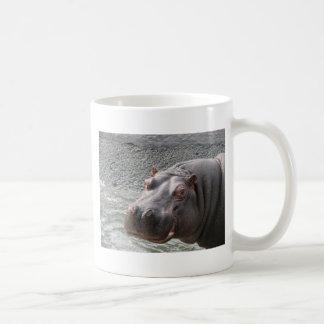 ¡Hipopótamo descarado! Taza Clásica