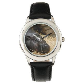 Hipopótamo enano relojes de mano