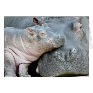 Hipopótamo Felicitaciones