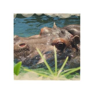 Hipopótamo hambriento impresión en madera