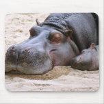 Hipopótamo Mousepad Tapetes De Raton