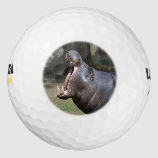 Hipopótamo Pack De Pelotas De Golf