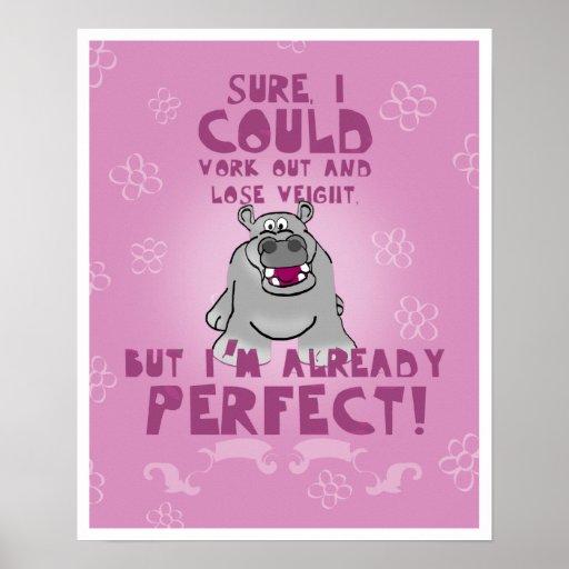 Hipopótamo perfecto poster