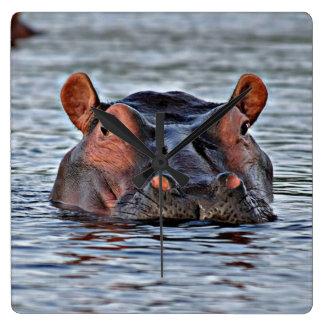 hipopótamo reloj cuadrado