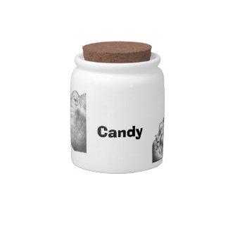 Hipopótamo y becerro jarras para caramelos