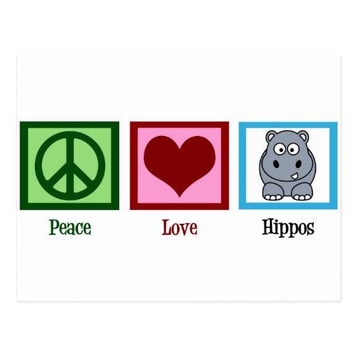 Hipopótamos del amor de la paz tarjeta postal