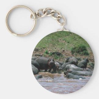 Hipopótamos - en el río llavero