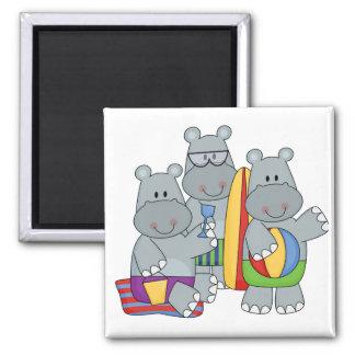 Hipopótamos en las camisetas y los regalos de la p imán cuadrado