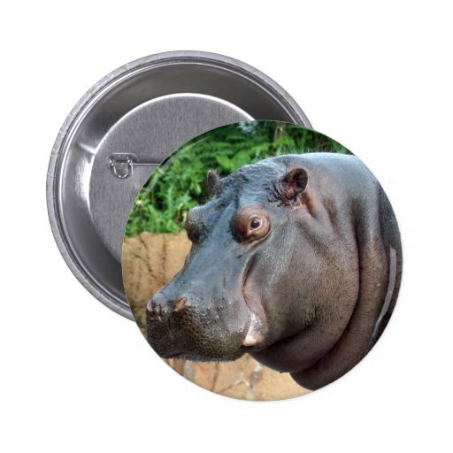 hippo10x10 buttons