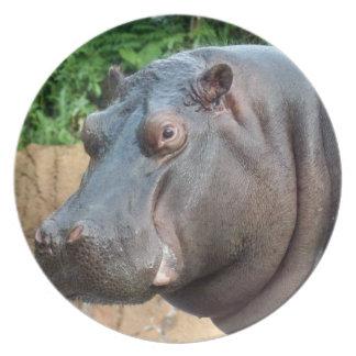 hippo10x10 dinner plates