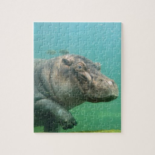 hippo-2 jigsaw puzzle