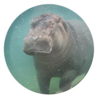 hippo-4 dinner plate