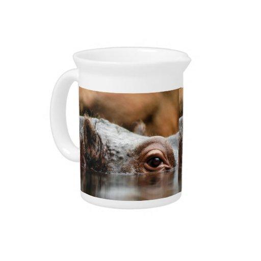 hippo-5 jarra de beber