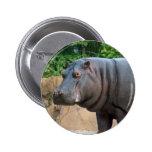 hippo-6 pins