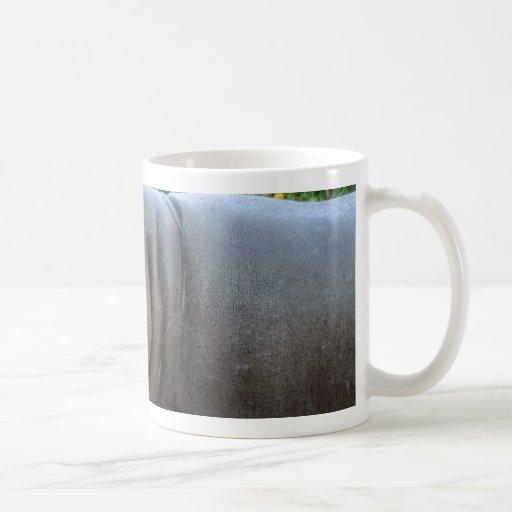 hippo-6 tazas de café
