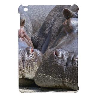 hippo-783