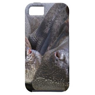 hippo-783 iPhone 5 fundas