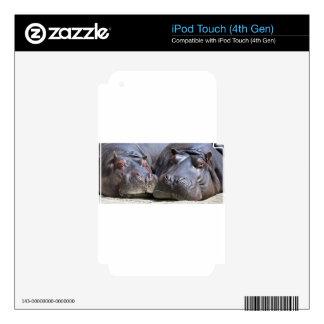 hippo-783 iPod touch 4G calcomanía