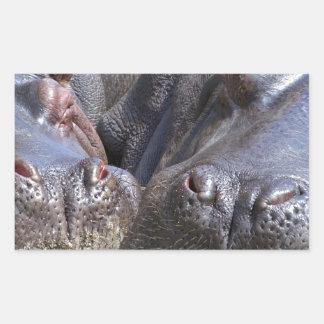hippo-783 pegatina rectangular