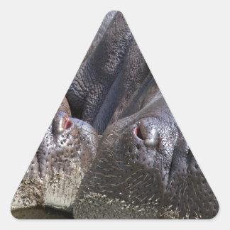 hippo-783 pegatina triangular