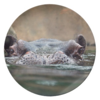 hippo-9 party plates