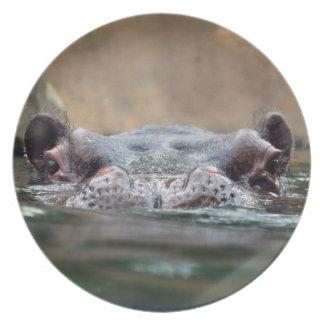 hippo-9 plate