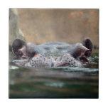 hippo-9 teja  ceramica