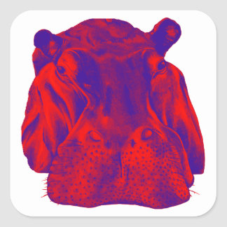 HIPPO AT DUSK SQUARE STICKER