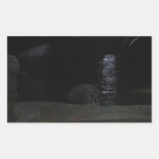 Hippo at Night Rectangular Sticker