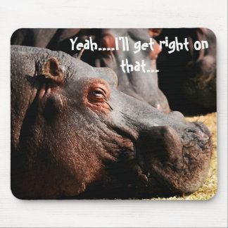 Hippo attitude I ll get right on that mouse pad