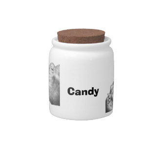 Hippo & Calf Candy Jar