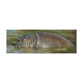 Hippo Canvs Print