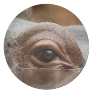 hippo-eye10x10 dinner plates