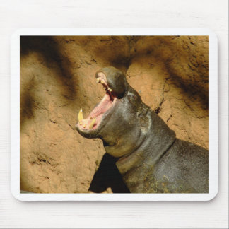 hippo hungry mouse pad
