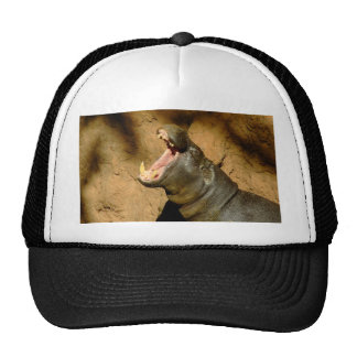 hippo hungry trucker hat