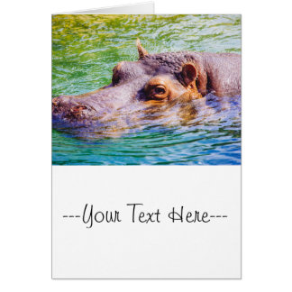Hippo In Colorful Water, Animal Photography Card