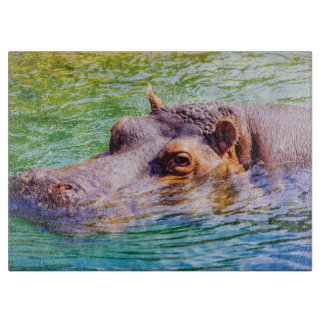 Hippo In Colorful Water, Animal Photography Cutting Board