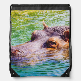 Hippo In Colorful Water, Animal Photography Drawstring Backpack