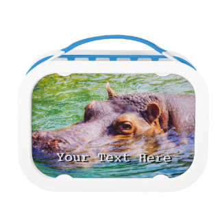 Hippo In Colorful Water, Animal Photography Lunch Box