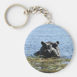 Hippo keychain