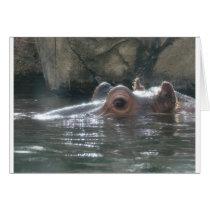 Hippo Peek a Boo Card