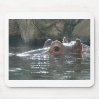 Hippo Peek a Boo Mouse Pads