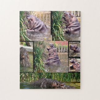 Hippo Photo Collage, Jigsaw Puzzle