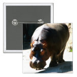 Hippo Pin