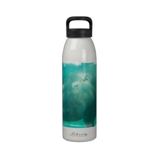 Hippo Under Water Bottle