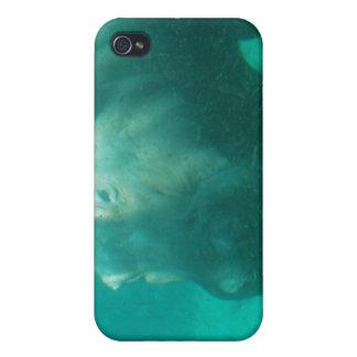Hippo Under Water iPhone 4 Case