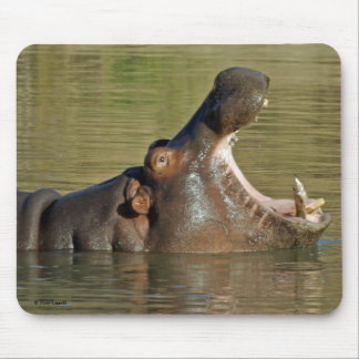 Hippo Yawn Mouse Pad