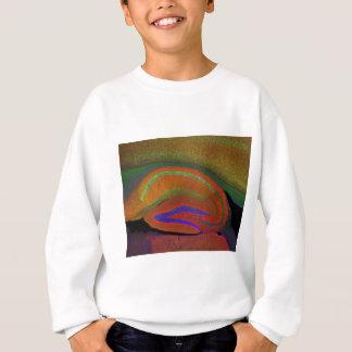 Hippocampal neurons 3 sweatshirt
